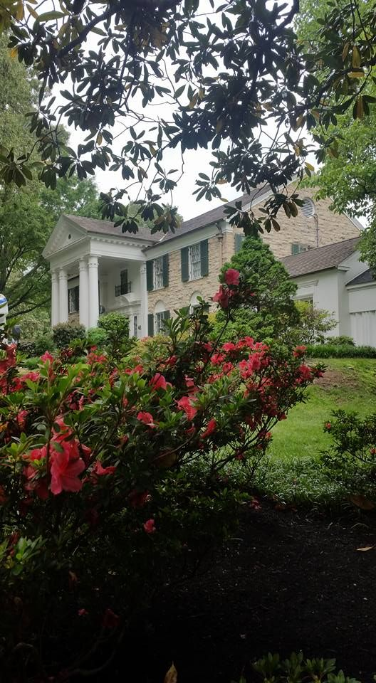 Graceland photographed by Elvis fan Maria Torres Martinez in May 2016 © Maria Torres Martinez | Photo found on: https://www.facebook.com/photo.php?fbid=1031944040209485&set=pcb.828544130585229&type=3&theater