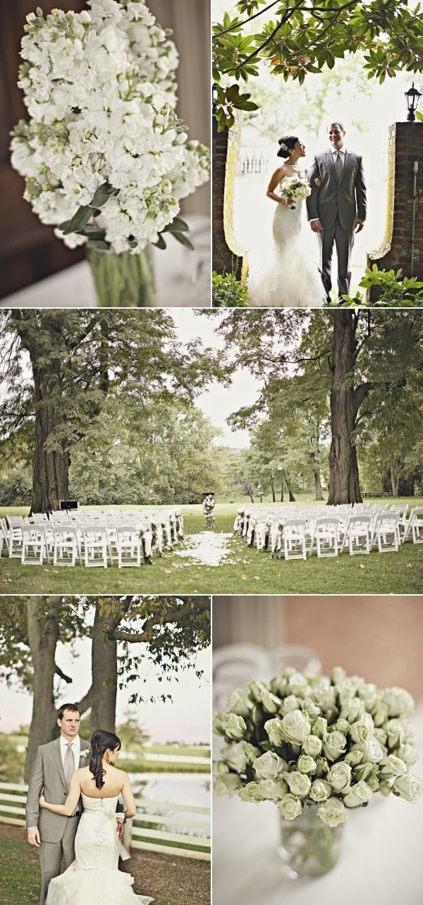 Kentucky I      Lexington  and Wedding  from max     Wedding   Kentucky  The     Momental Wedding Wedding Designs Story Love Concepts air