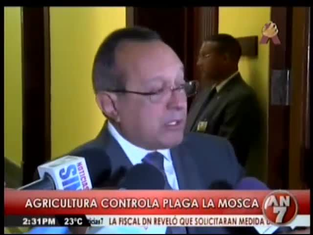 Ministerio Agricultura Dice Controla Plaga De La Mosca #Video