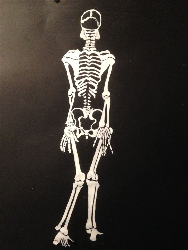 Skeleton Drawing (2015), White Ink on black paper. By Joelle Finfe.