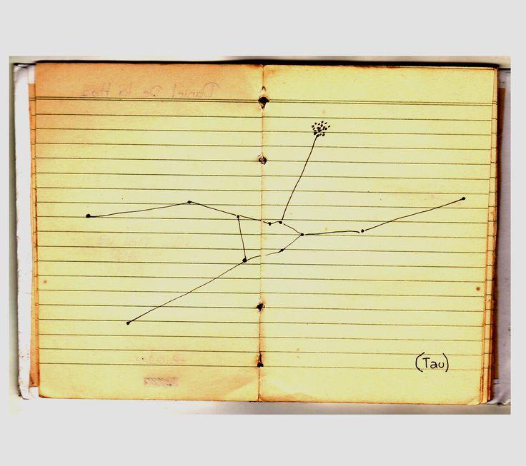 Daniel De La Hoz.  (tau) constelacion de tauro