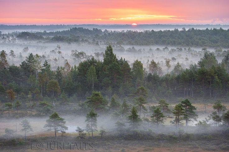 ***sunrise in the Mukri by Jüri Talts / 500px (Estonia)