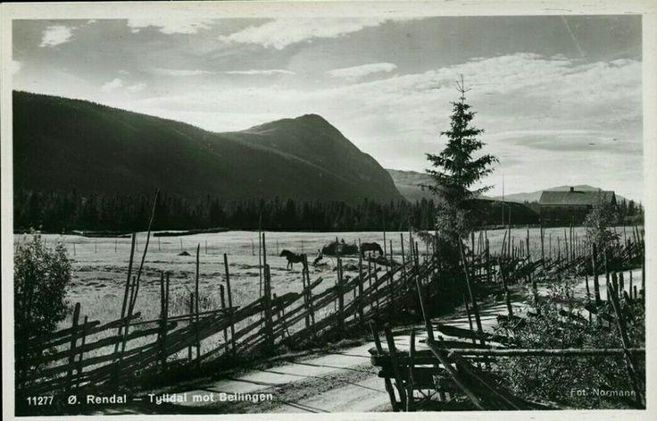 Tylldal i Øvre Rendal mot Bellingen, Hedmark fylke Østerdalen 1950-tallet Foto Normann