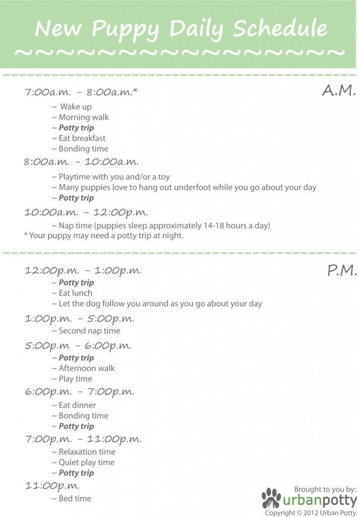 Printable New Puppy Daily Schedule