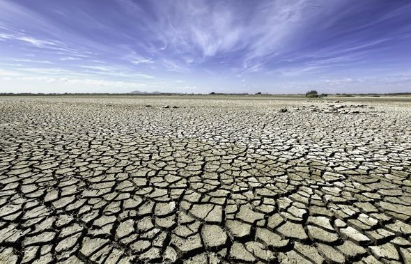 We think this headline says it all: Climate Change Warning: A Quarter Of The World Could Become A Desert. There's more on this horrifying possibility here: https://www.express.co.uk/news/science/899250/Climate-change-DESERT-global-…