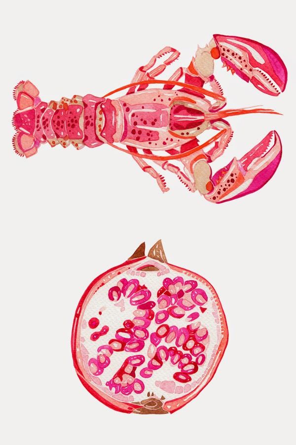 Watercolour Illustrations - Holly Exley Illustrator: Tropical Colours!   Watercolour Illustrations