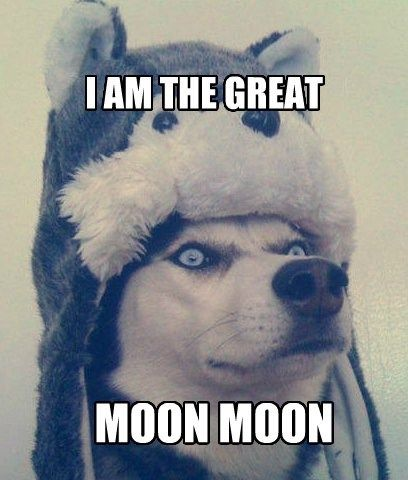 Guess who just discovered Moon Moon... Thank you internet.