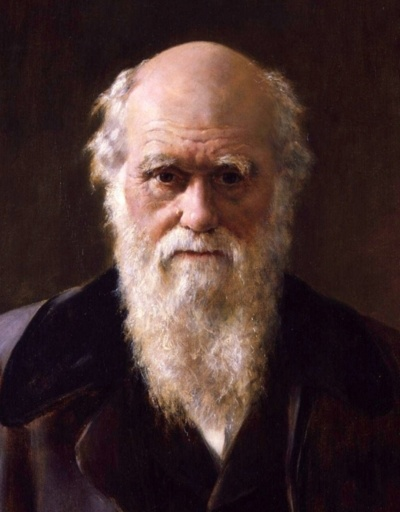 Charles Robert Darwin, by John Collier, c. 1881-1883.    I love how...worried Darwin looks. Unsure, even. Like he's gotten himself into something much larger than he ever wanted. The face of the man who killed God, and regretted it?