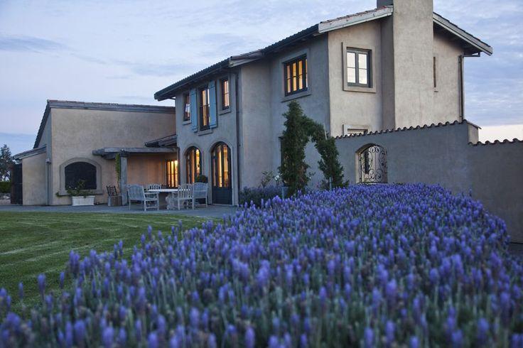 Lavender Hill, #Auckland, #NZ
