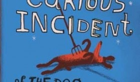 ABA English Blog: The Curious Incident of the Dog in the Night-time