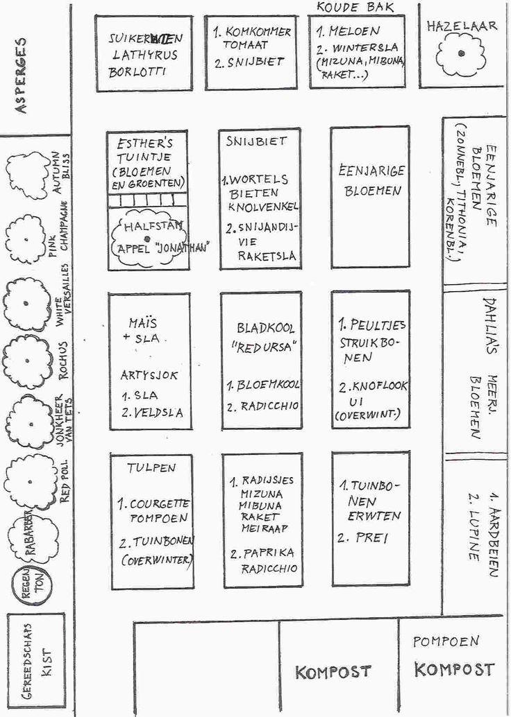 voorbeeld van een combinatieteelt teeltplan (via tt den helder)
