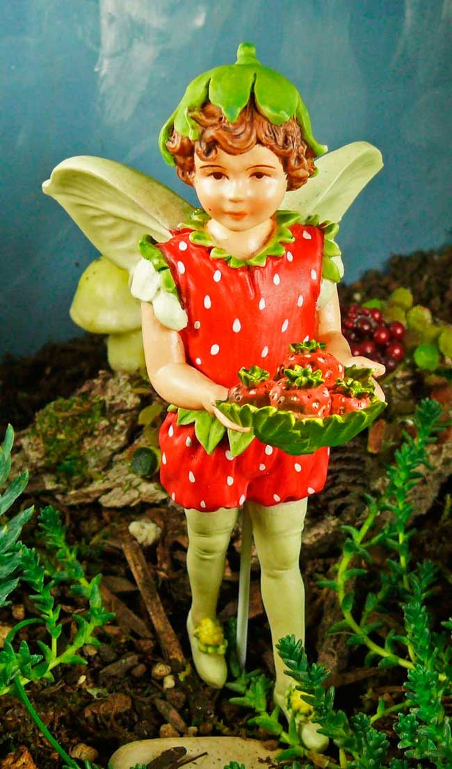 Strawberry Fairy. Am I Getting Carried Away Here?