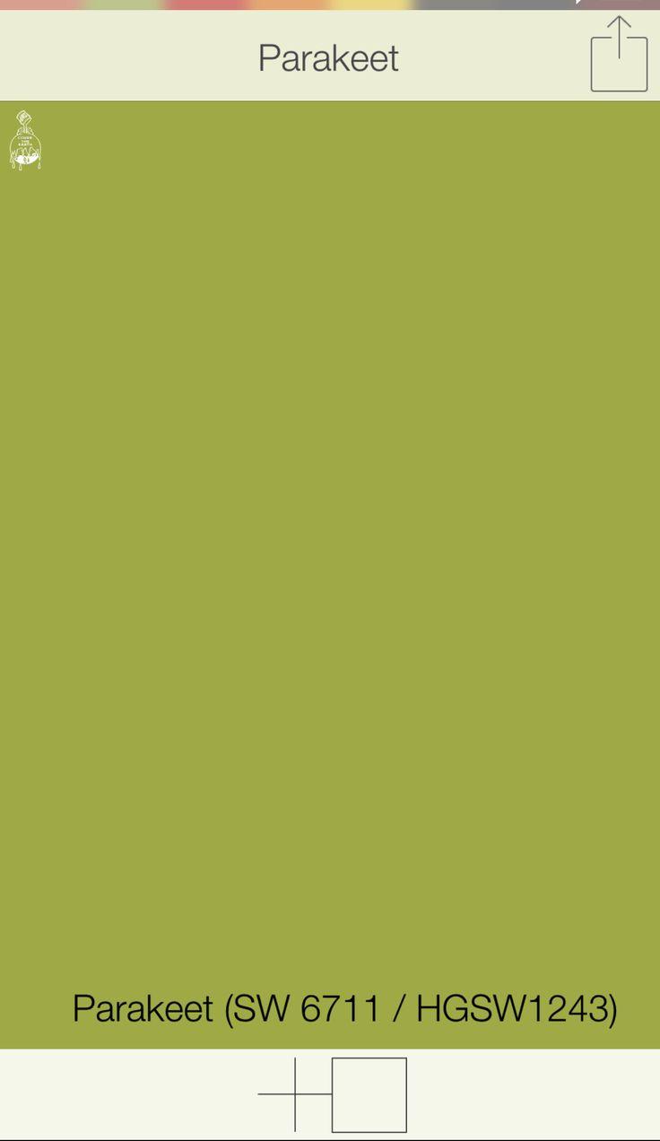 Green Front Door Colors   Parakeet SW 6711   Sherwin Williams Paints    SwatchDeck App