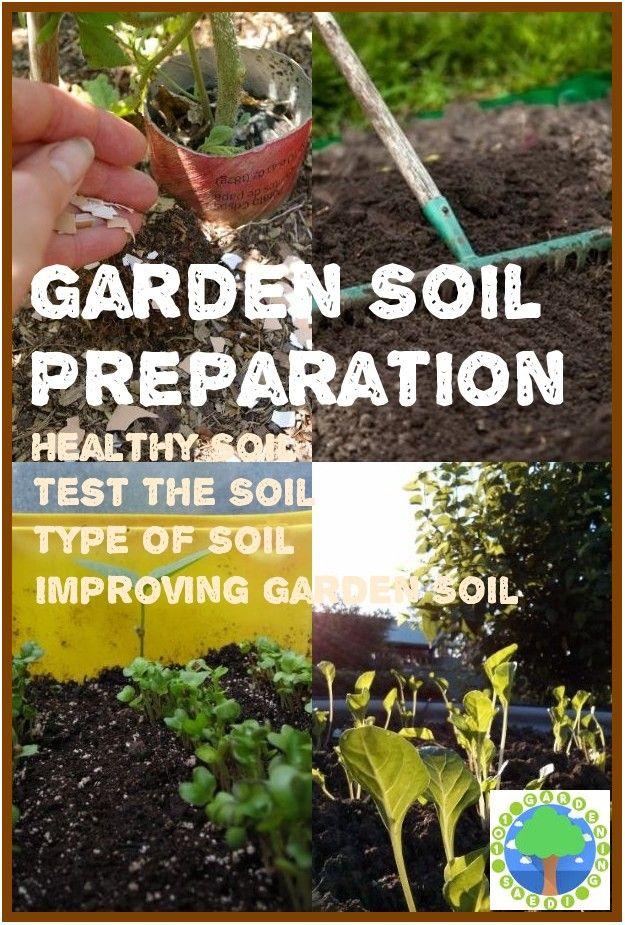 3c3b34c4ca0b695e40296ba8e86254cd - How Can Gardening Help The Environment