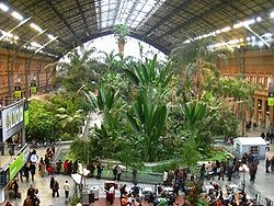 Interior plaza in old Atocha station, Madrid