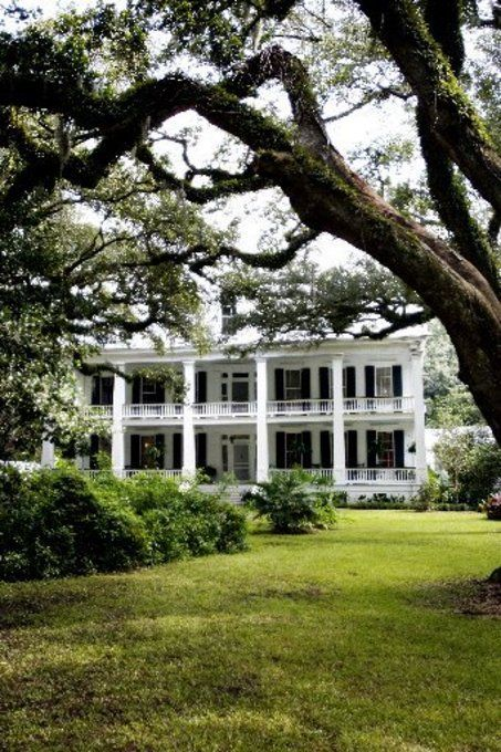 Albania Plantation, Jeanerette, LA, where my great-grandmother lived.