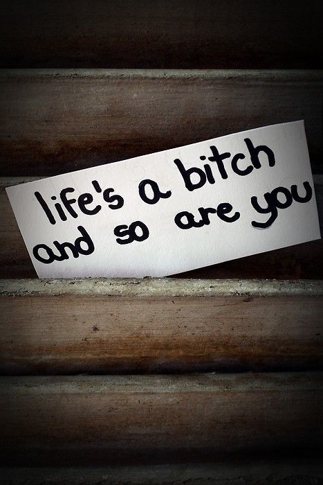 lifes a bitch, and so are you!!!! Obviously you look at my shit!  : ) Have a good day BITCH!