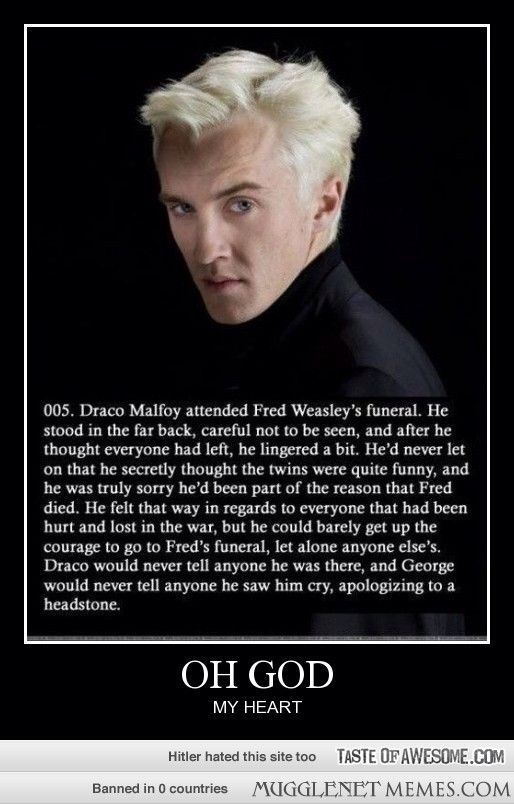 POTTER FEELINGS WILL NEVER CEASE.