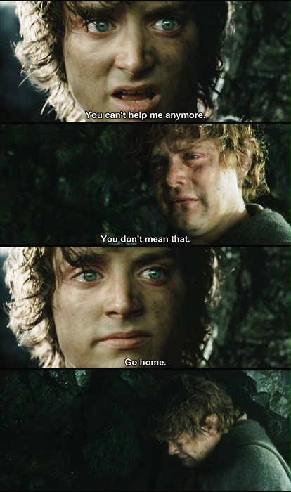 Superior It BURNS Me To Think Of All The Illiterate People Who Think Frodo Is A Jerk