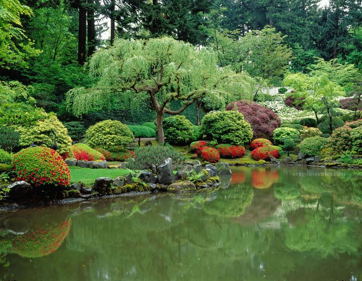 14 best koi pond inspiration images on pinterest for Japanese garden with koi pond
