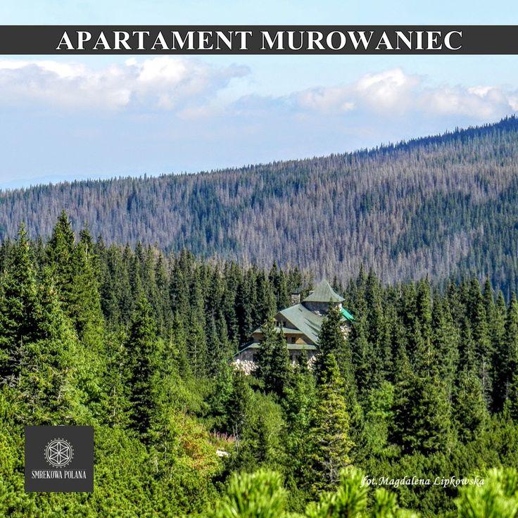 Apartament Mroźny - zapraszamy! Hala Gąsienicowa - Murowaniec #poland #malopolska #zakopane #mountain #tatry #place #gąsienicowa #winter #zima #destination