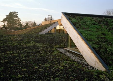 Love the rooftops. Paul Chevallier School by Tectoniques
