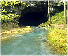 Picture of a stream disappearing into a cave in southern Georgia, USA shows that a stream can act as a direct funnel right into ground water.