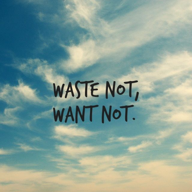 Waste not want not proverb essay