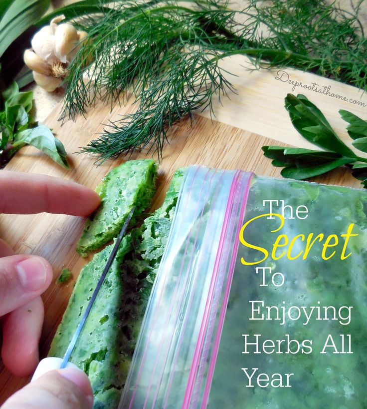 The Secret To Enjoying Herbs All Year, gourmet cooking, seasoning with fresh herbs, preserving herbs, herb oil, herb butter, locking in flav...