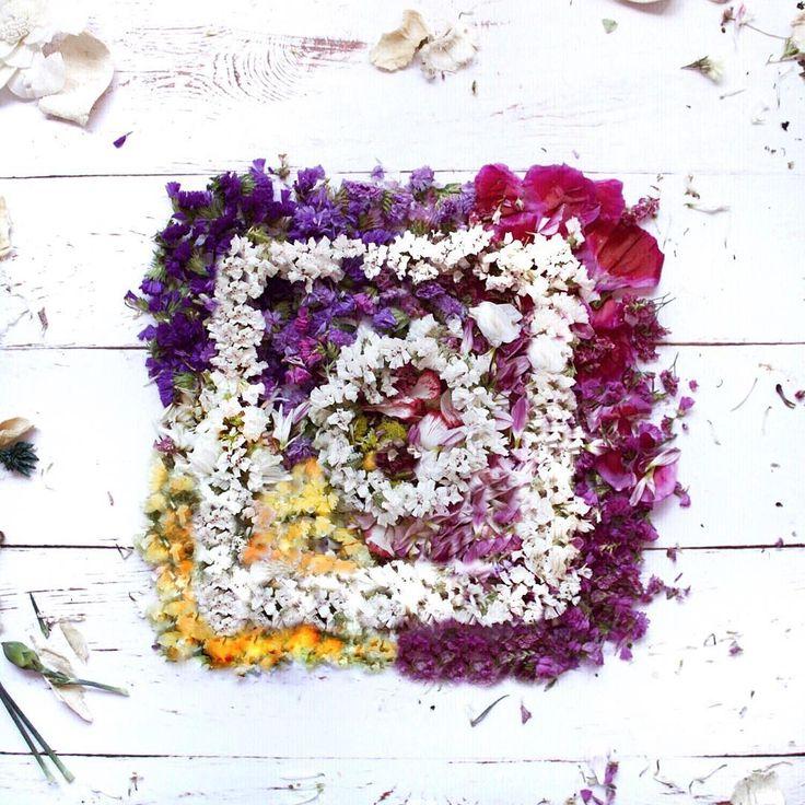 i have this thing with...#instagram  . . we're the power we're the mix of colours we're the best folk! #communityfirst . . . non voglio fare il solito discorso strappa lacrime ma grazie davvero a questa app che mi fa vivere altre mille vite. Un libro che stiamo scrivendo insieme un quadro in cui i colori si mixano creando qualcosa di unico. Cambieranno i loghi e i modi ma siamo sempre noi la sua vera forza #love #thanksIG grazie a tutti voi che siete diventati parte della mia vita che siete…