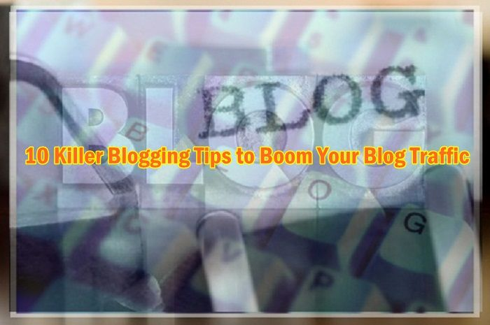Newbies often get excited witnessing shiny objects in their blogs. Like when the statcounter shows that someone visited their blog from a far-off country or a user commented on an article from the other hemisphere, we think we've become internationally acclaimed. But that is not so. If you really want your blog to boom for traffic you should put effort on creating a real content, but of course besides that you need some strategies, tips, techniques, etc. I am afraid