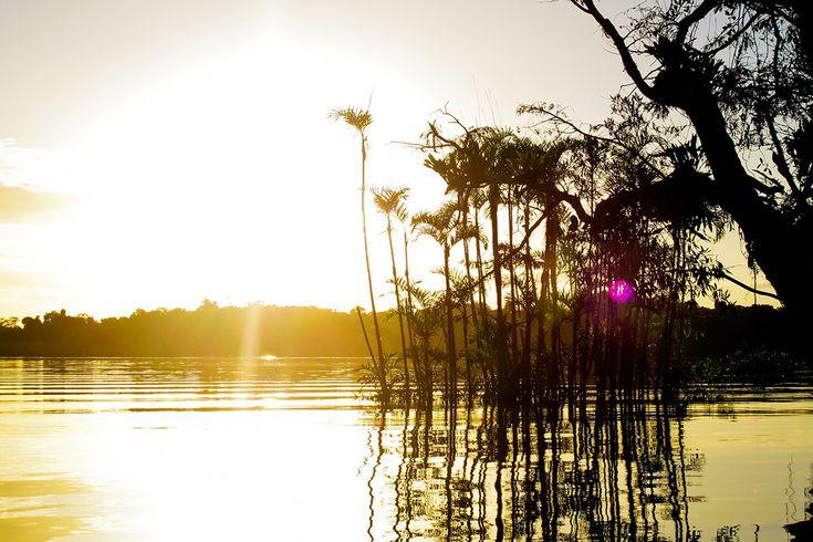 Reisfotografie natuurfotografie zonsondergang Amazone Ecuador. Foto door Marijke Krekels fotografie