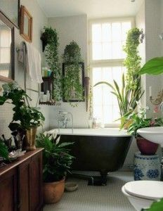 batromm # green in bathroom# boho bathromm
