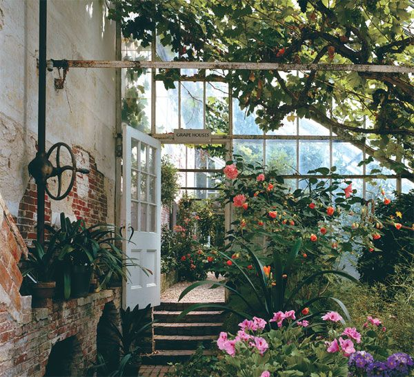 love! Lyman Estate, Waltham, MA. This is the 1804 Grape House with vine cuttings from the 1870's. Photo: David Bohl.