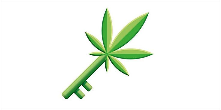 3 1 9 Ultimate Weed Emojis You Need To Use On World Emoji Day