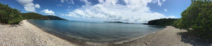 Coral beach, Airlie Beach