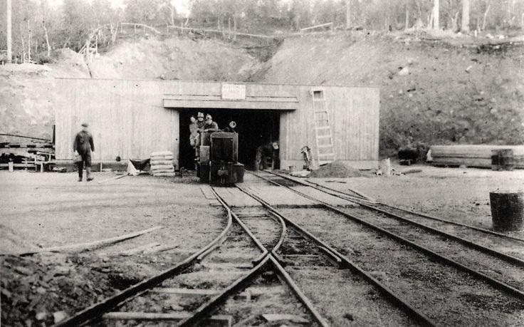 Saksan sotatalous oli hyvin kiinnostunut Suomen luonnonvaroista, erityisesti…