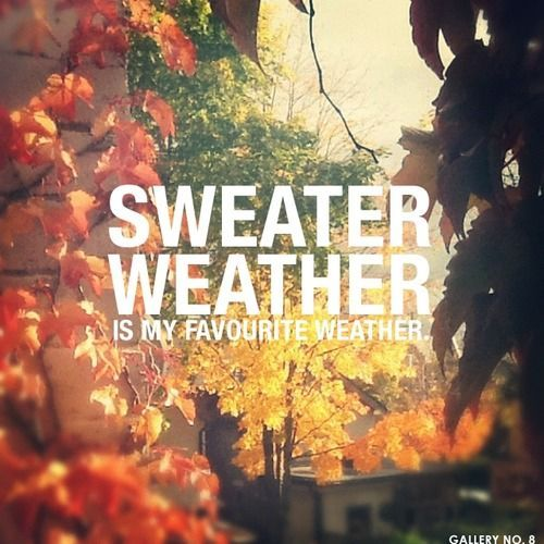 Fall Sweater Weather Is My Favourite Weather