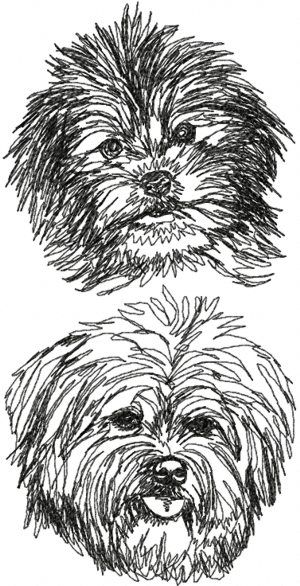 Advanced Embroidery Designs - Havanese Set