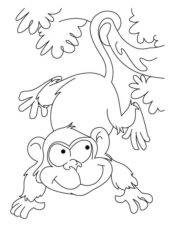 Playing Ape Coloring Pages