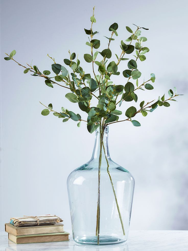 Displayed in our Recycled Glass Demi John Vase, our set of three artificial eucalyptus sprays have realistic soft green leaves on long stems. These leafy stems will add a fresh botanical feel to your space without the hassle of buying real plants, and work well in almost any vase