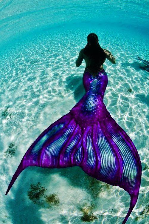 Purple & turquoise mermaid fairytale