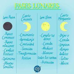 Humor y ciclo lunar