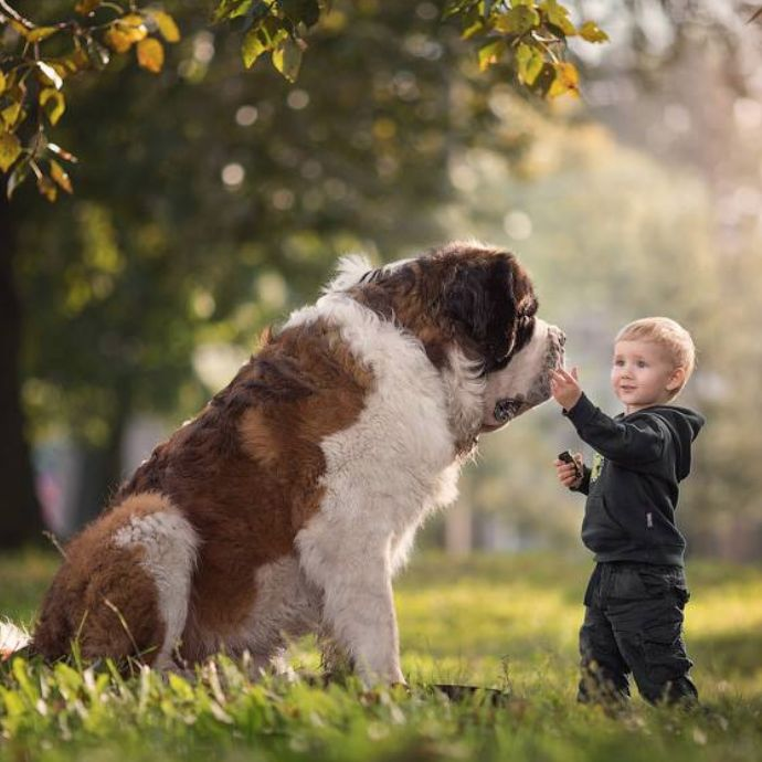 """Tenderness"" is how photographer Andy Seliverstoff describes this moment between a boy and his Saint Bernard in his new book ""Little Kids and Their Big Dogs."" Click to preorder!"