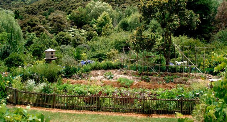 Interview with Dave Jacke of Edible Forest Gardens: Sustainable World Radio | Over Grow The System