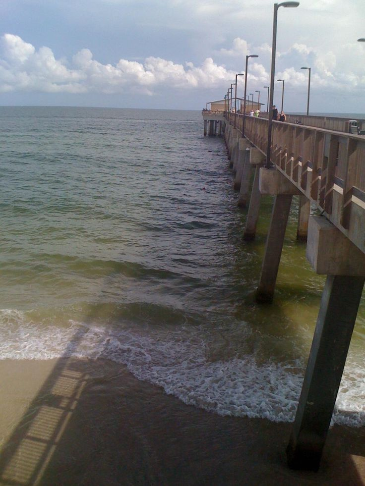 13 best here fishy fishy images on pinterest dauphin for Dauphin island fishing pier