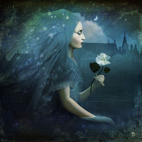 'The Midnight Flower' by Christian  Schloe on artflakes.com as poster or art print $20.79