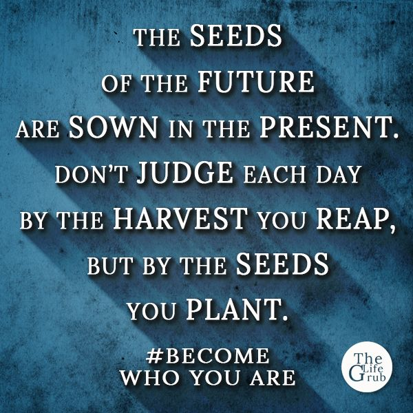 The seeds of the future are sown in the present. Don't judge each day by the harvest you reap, but by the seeds you plant.