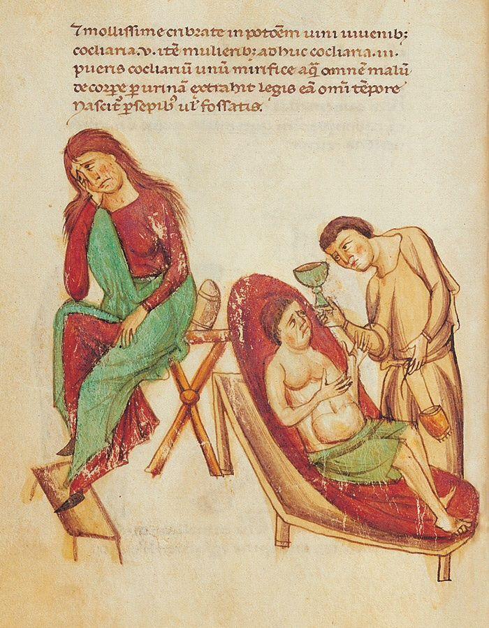 Codice di Medicina e Farmacia di Federico II - Ms Pluteo 73.16 - Biblioteca Medicea Laurenziana di Firenze - prima metà del XIII secolo