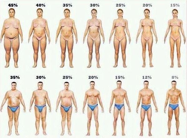 땡글땡글⊙ㅁ⊙ :: [다이어트 자극사진]체지방률 몸매★같은몸무게 다른몸매